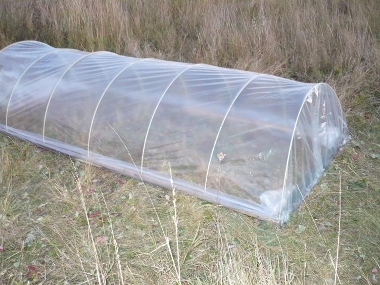 Парник под пленку для дачи из стеклопластиковой арматуры
